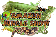 Amazon Jungle Show
